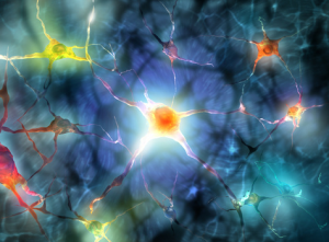 cefalea e sistema nervoso la sensibilità che genera il dolore